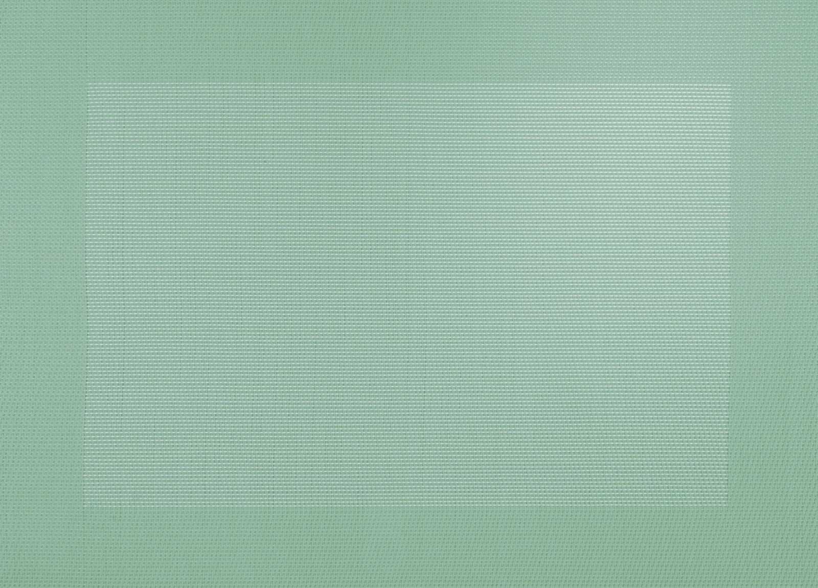 Онлайн каталог PROMENU: Подставка под тарелку ASA Selection PVC PLACEMATS, размеры  46х33 см, зеленый ASA Selection 78106076