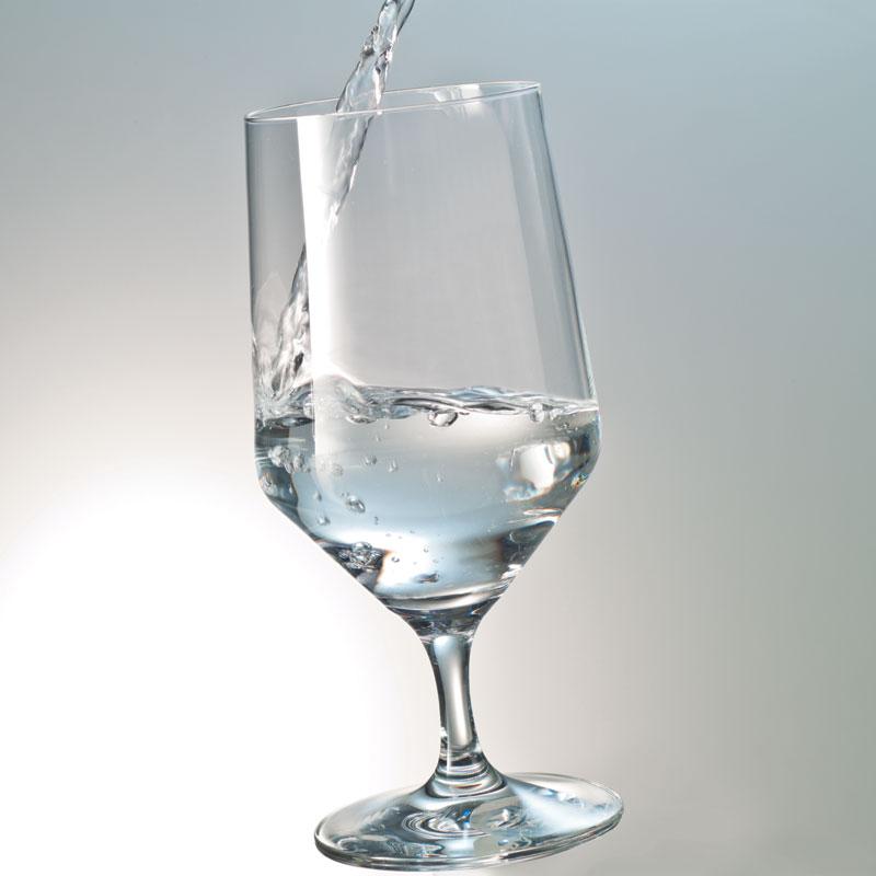 Набор бокалов для воды Schott Zwiesel PURE, объем 0,451 л, прозрачный,  6 штук Schott Zwiesel 112842_6шт фото 2