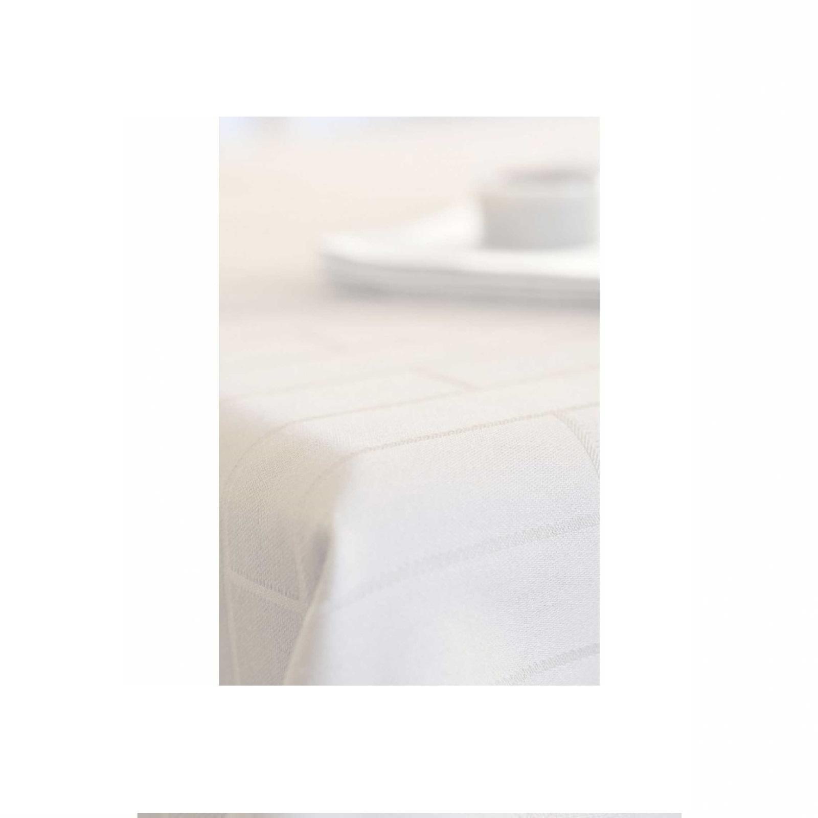 Скатерть хлопковая Winkler TECHNIQUE, 170х250 см, белый Winkler 7986010000 фото 1